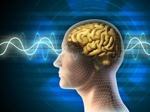brain awareness